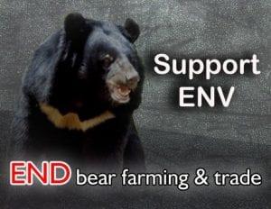 Bear campaign Aug 20 2014