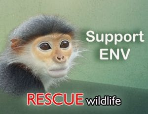 Rescue wildlife Aug 20 2014