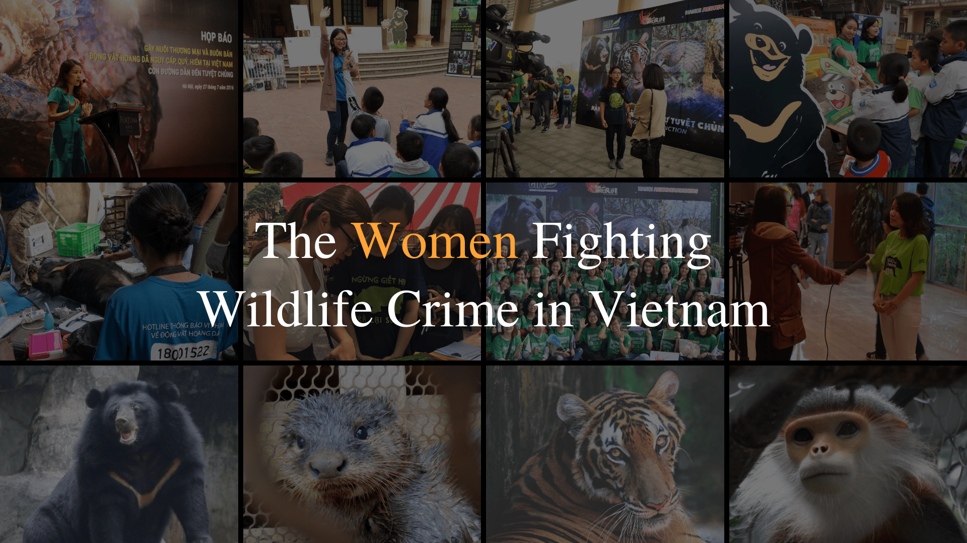 How the Women of ENV Fight Wildlife Crime in Vietnam